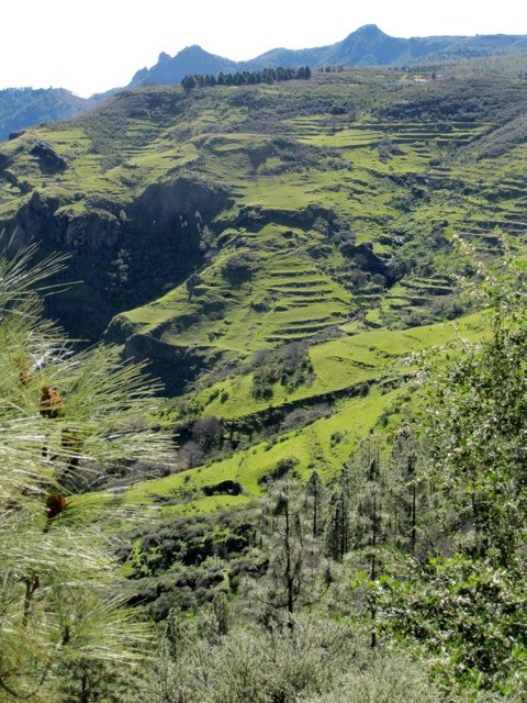 wandelreis Canarische Eilanden Gran Canaria