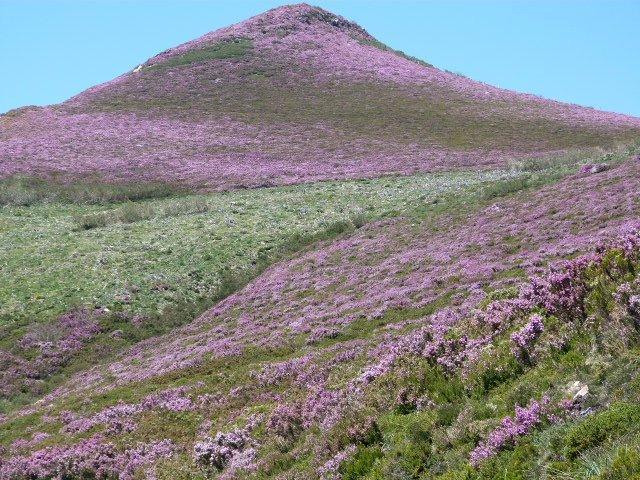 Wandelreis Asturië, Somiedo