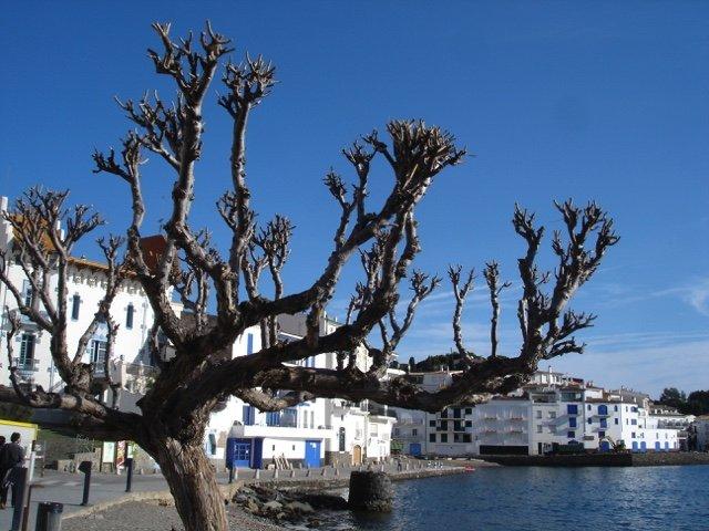 Wandelreis Catalonië, Cap de Creus