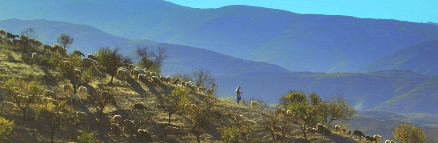 Wandelreis Alpujarras
