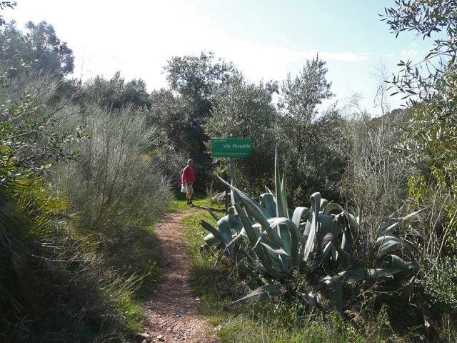 Wandelreis Spanje Sierra de Grazalema